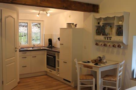 Liebevoll eingerichtete Wohnung in ruhiger Lage - Trier