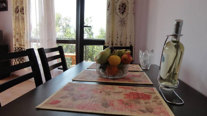 Luxury apartment 50 meters from the sea and center