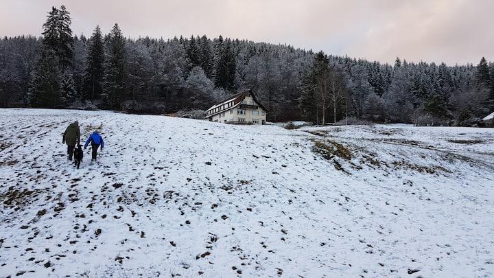 """Dein Schwarzwald-Appartement """"Sonnenschein"""""""