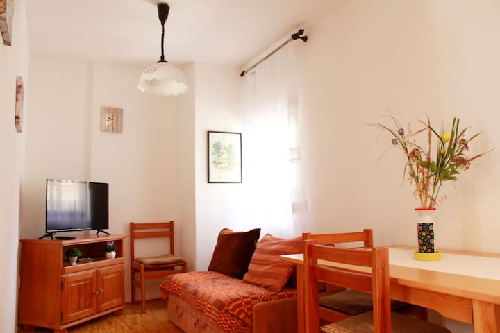 Apartment for 2-3 people Old Town Budva