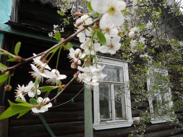 Летняя веранда на берегу Ладожского озера - Shlisselburg - บ้าน