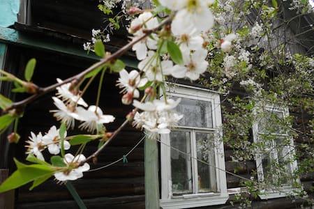 Летняя веранда на берегу Ладожского озера - Shlisselburg - Hus
