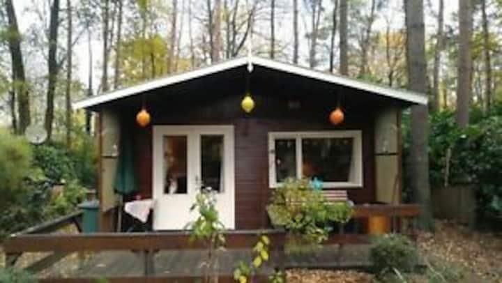 knus vakantiehuisje in het bos bij Lanaken