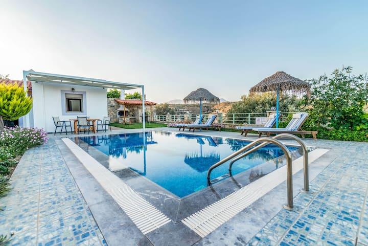 Villa Erato in Pitsidia, swimming pool - garden