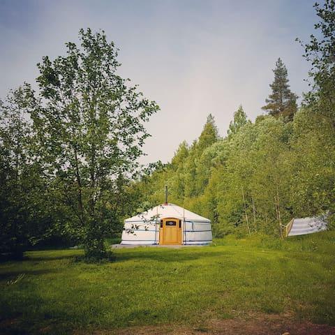 Yurt in Swedish Lapland