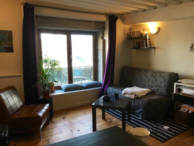 Grand studio cosy dans le Vieux Lyon