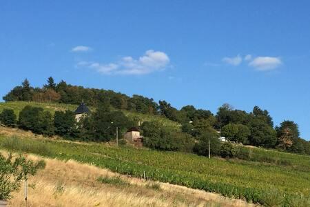 Appartement au cœur des vignes du Beaujolais