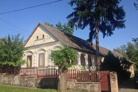 Bodor House - Romonya - Ev
