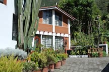 The Cactus`House