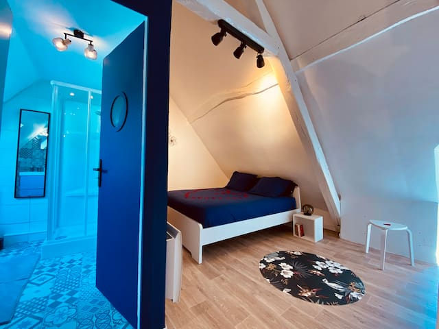 Chambre n°1 avec salle d'eau et WC, climatisation, lit 160x200.