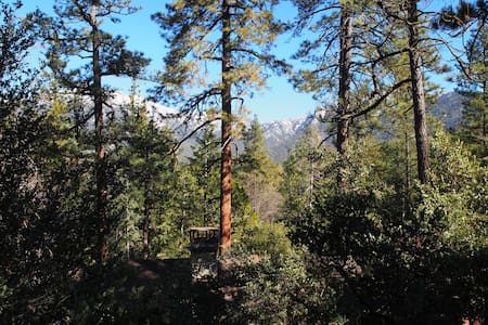Baily's Forest Lodge - A Winemaker's Retreat! - Idyllwild-Pine Cove - Hytte