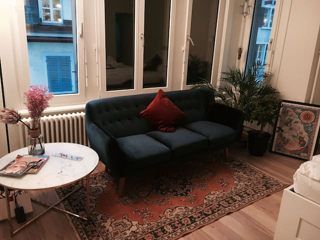 Lovely 1.5 room apartment in the heart of Zürich