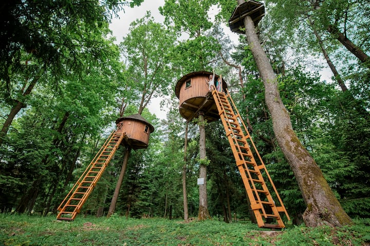 Tree house 8 m from the ground