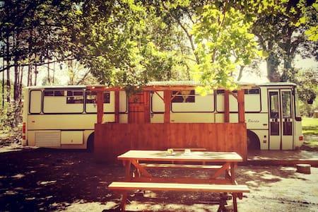 Magic Bus pleine nature 30min de Bordeaux & plages