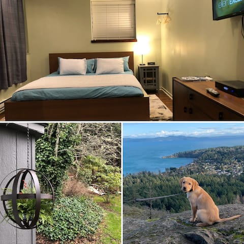 Mountainside Suite:  Ideal park + city combo