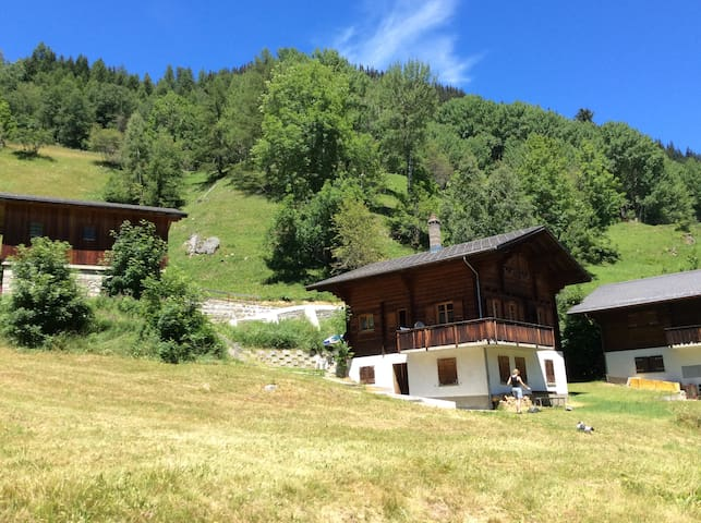 Chalet Karoline - Goms/Switserland - Grafschaft - Appartamento
