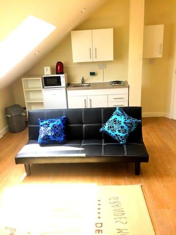 Service Apartment penthouse-Heathrow