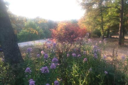 Blue Ridge Mountain Getaway - アフトン