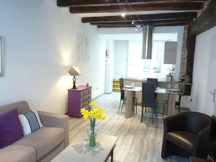 La Petite Citadine : Amboise apt on ground floor