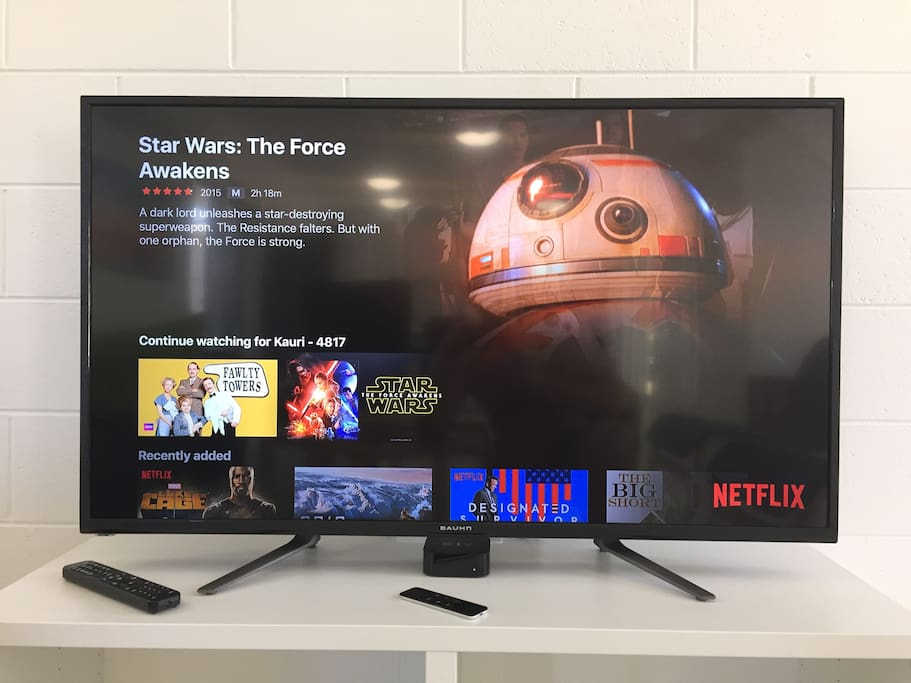 Apple TV + Netflix TV and Movies