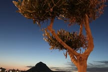 The Area - Perfect evening on the Javea Arenal