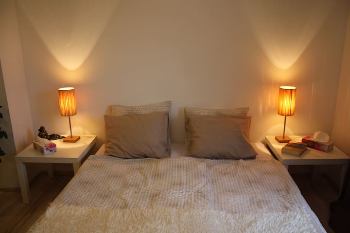 New cozy room in family house - Prag - Ev