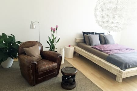 Modern, big and bright room in the center of Berne - Berna
