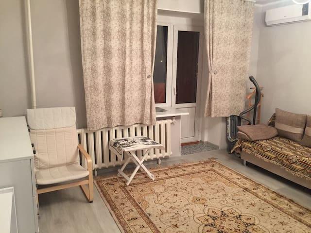 Cosy apartment, renovated - Астана - Lakás
