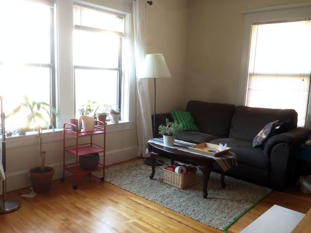 Charming 1BR+1BA at very close to Harvard Yard - Cambridge - Apartment