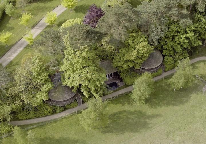 Tree House Lodges near London & Brighton