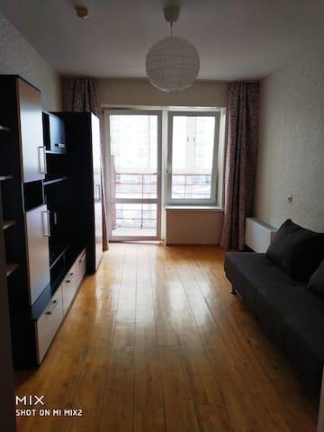 Двухкомнатная квартира на ул. Бебеля-Опалихинская