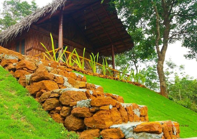 Wayanad Farm stay-Yaksha, Wayanad, Kerala