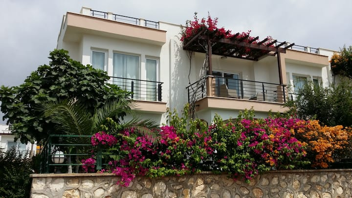 Holiday House, terraced