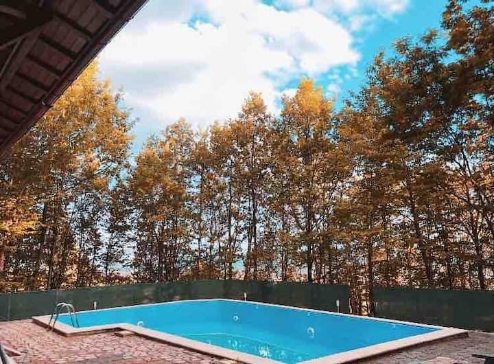 Luxury Villa in Prahova Valley