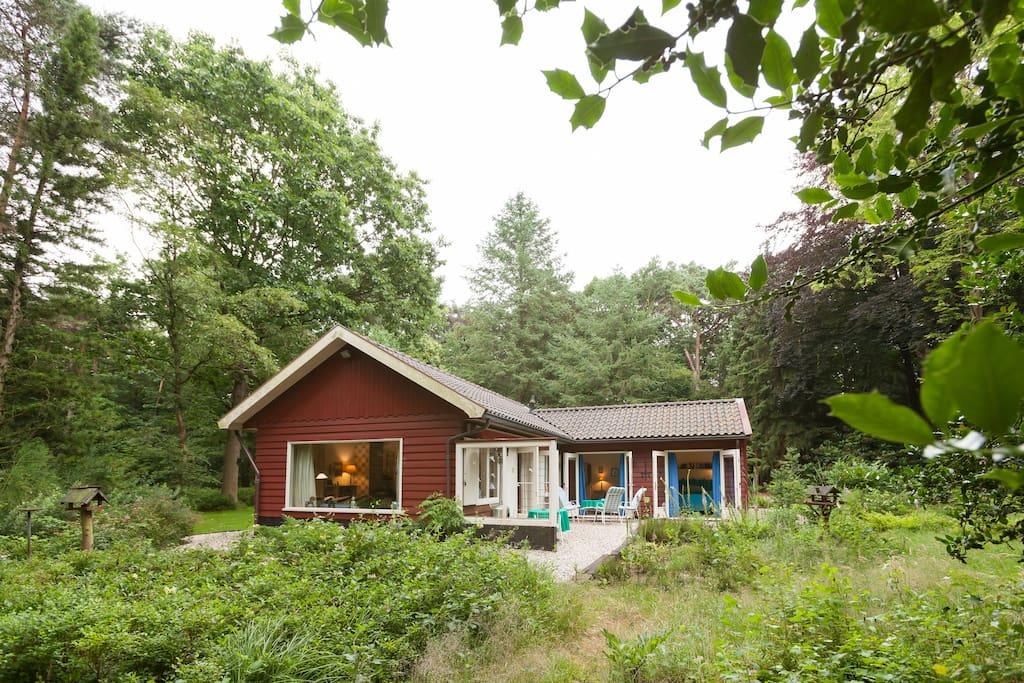 Prachtig natuurhuis in eigen bos huisjes te huur in epe for Te huur gelderland