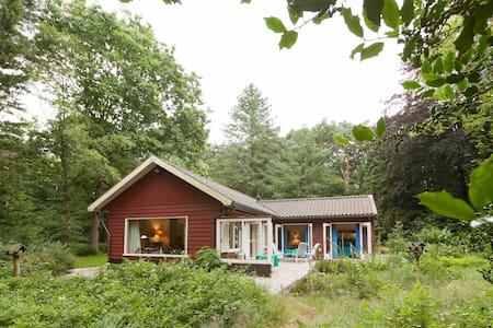 Prachtig natuurhuis in eigen bos - Epe