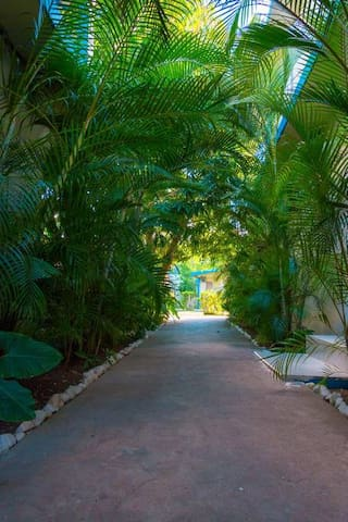 Standard Room · Garden View Room on 7-Mile Beach