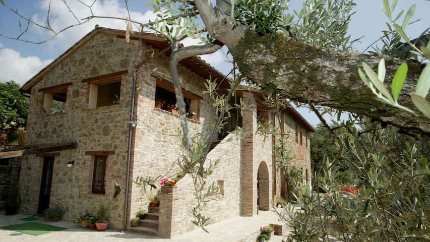 CASA LORENZO ~ OLIVA ~Stunning rural apt with pool - Colle Calzolaro - Appartement