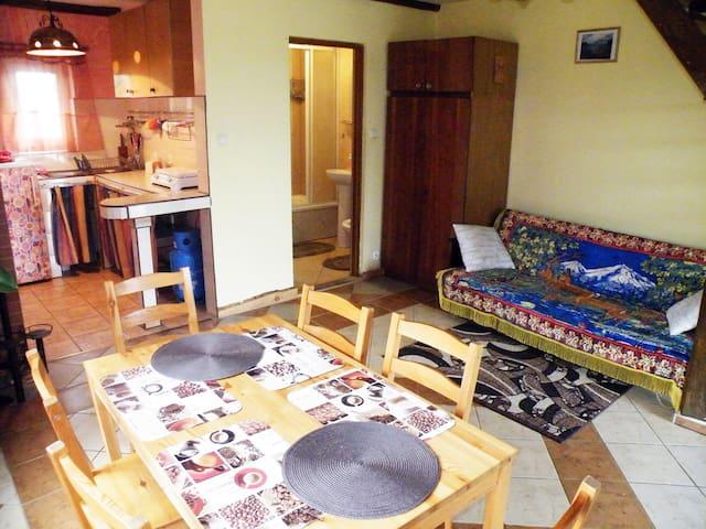 Pokój dzienny z dwuosobową kanapą, kuchnia i łazienka