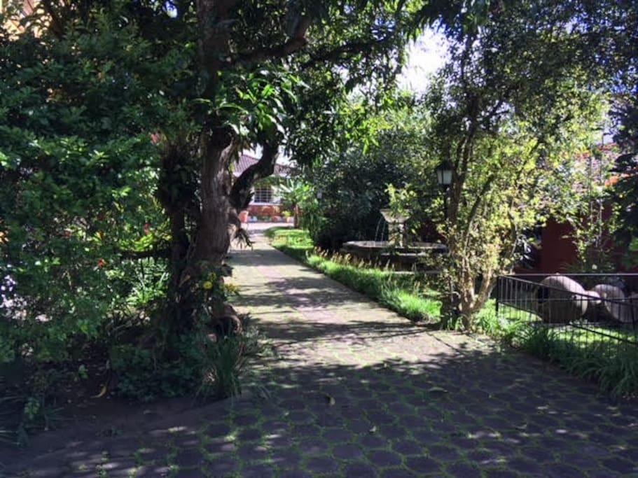 jardin publico / public garden
