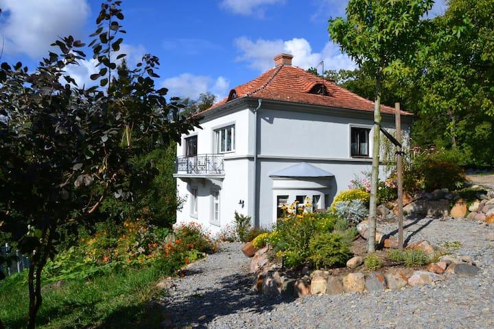Old villa with garden