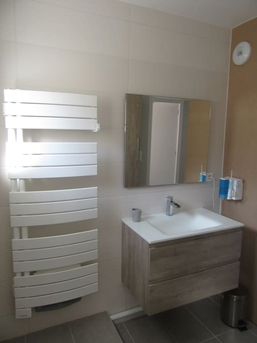 salle de bain  +douche