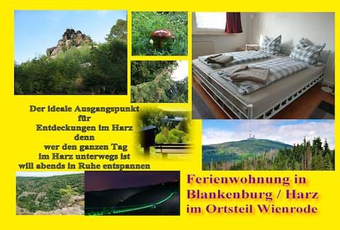 Wienrode 2 to 4 (5) Gasten - 47 m² Appartement aan de Harz