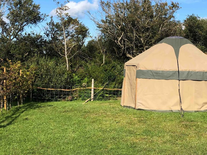Yur-'tis  A cosy little yurt set up for 2 people