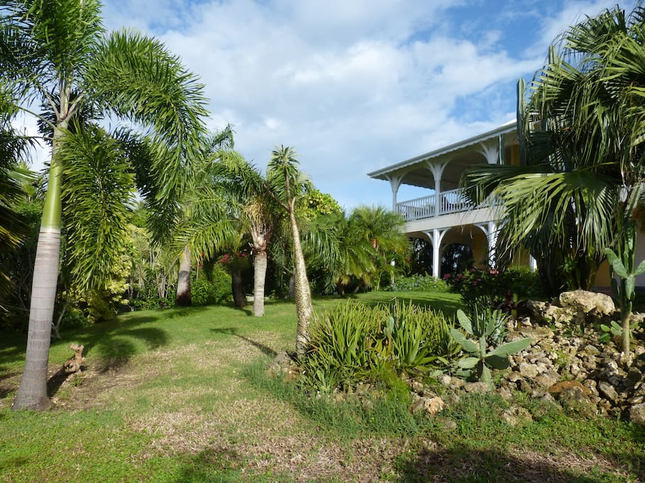Appartement bord de mer avec jardin tropical for Jardin tropical guadeloupe