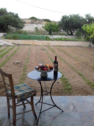 Ammoudares garden house