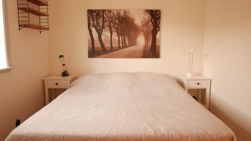 Master Bedroom (1,6 meter *2,0 meter)
