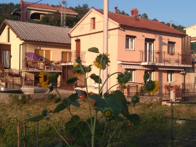 Sunflower Room by Alida