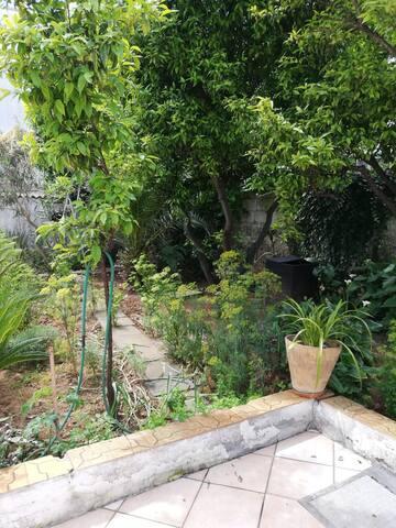 Alloggio ampio con giardino, camino,  in centro.