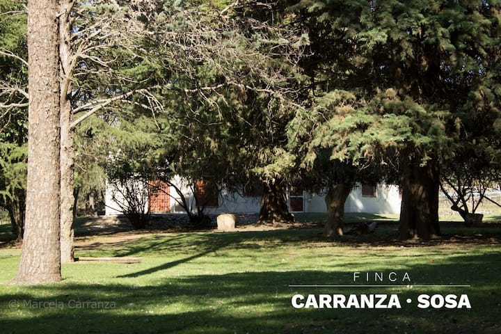 Finca Carranza Sosa, departamento DEL ARROYO